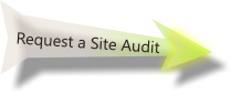Request an audit of your existing site.